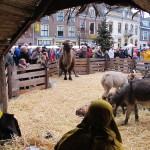 Kerstmarkt 2015 copyright Tobias Verschoor 4951