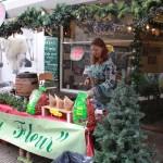 Kerstmarkt 2015 copyright Tobias Verschoor 7167