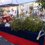 Kerstmarkt Doesburg 2012 2012  50